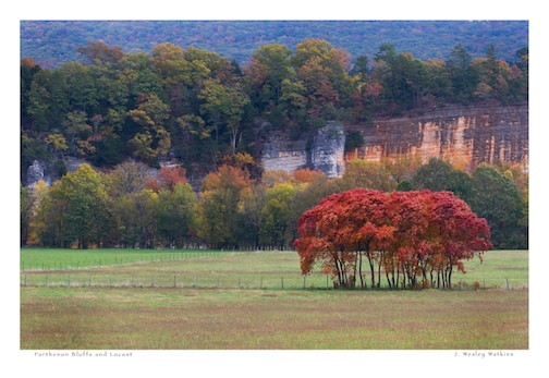 Parthenon Bluffs in Fall